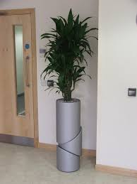 live indoor and interior office planting schemes rental plants in