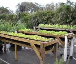 How To Build A Raised Garden Bed Cheap Garden Design Garden Design With Creative And Unique Container