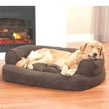snoozer dog beds uk orthopedic cozy cave pet bed small khaki