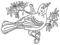 Forest Animals Coloring Pages And Printable Activities 1 Forest Animals Coloring Pages