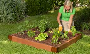 kids gardening archives frame it all blog