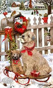 shop for cards soft coated wheaten terrier wheaten terrier