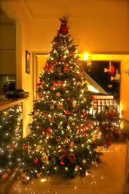 interior traditional trees decorated beautiful