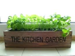 window herb harden window sill herb garden kits click grow smart herb garden home