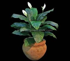 Peace Lily Plant Artificial Giant Peace Lily Plant Commercial Silk Int U0027l