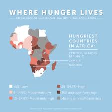 World Hunger Map by World Hunger In Africa Map Image Information