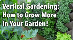 How To Grow Vegetables by Vertical Gardening Simple Ideas For A Vertical Vegetable Garden