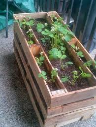 Diy Strawberry Planter by Turn A Pallet Into A Strawberry Planter Diy Projects For Everyone