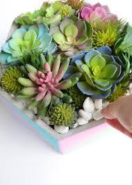 diy planter ideas color blocked succulent planter crafts unleashed