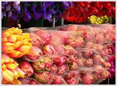 Florists Florist In Alabang Flowers Alabang Florists