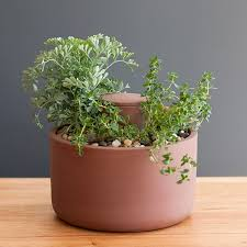 self watering planter by joey roth cool hunting