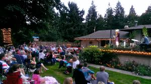 jenn grinels backyard concert 1000 wonderful things