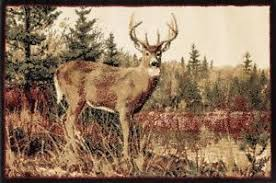 Fire Retardant Rug Whitetail Deer Hearth Rug Fire Resistant Rugs Hunting Rug
