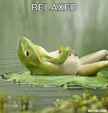 Frog Meme Generator - relaxed memes image memes at relatably com