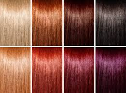 Types Of Hair Colour by Different Types Of Hair Coloring Styles For Indian