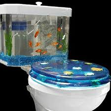 Decoration Of Fish Tank Contemporary Small Aquarium Tanks For Home Decoration