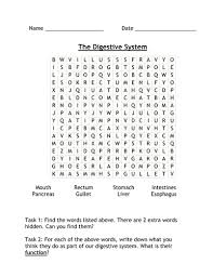 digestive system wordsearch by vequihellin teaching resources tes