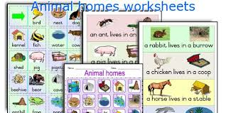 all worksheets animals and their homes pictures worksheets