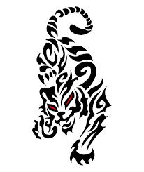 large angry tribal tiger on frontbody in 2017 photo
