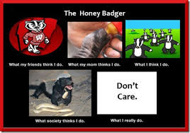 Badger Memes - honey badger thanks for the term dawkins honey badger meme