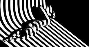 creative pattern photography 14 creative photographers who know how to use shadows