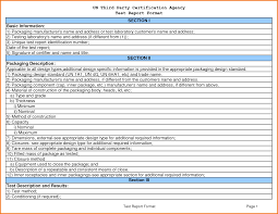 Excel Test Plan Template 8 Test Report Template Expense Report