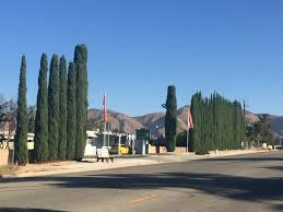 Twin Pines Landscaping by Twin Pines Mobile Home Park Yucaipa Ca Apartment Finder
