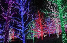 Outdoor Christmas Decorations Ottawa by 8 Of The Best Christmas Light Shows In Canada Wheels Ca