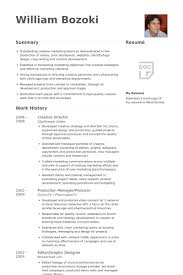 Visual Resume Samples by 11 Art Director Resume Examples Sample Resumes Resume Examples