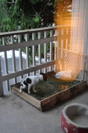 8 best indoor dog potty images on pinterest indoor dog potty