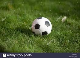 Backyard Football Free Soccer Ball Lying In Green Grass At Backyard Of House Stock Photo
