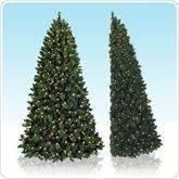 corner christmas tree https www pin 257057091200911134