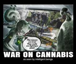 Legalize Weed Meme - war on cannabis as seen by intelligent beings funny legalize weed