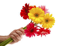 flower delivery service cyprus taxis flower gifts parcel mail cyprus delivery