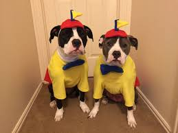Tweedle Dee Tweedle Dum Halloween Costumes Bookish Halloween Costumes Pets