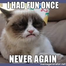 Grumpy Cat Meme I Had Fun Once - i had fun once never again birthday grumpy cat meme generator