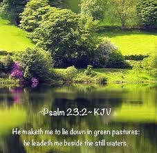2603 nature bible verses images scriptures