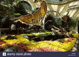 Inside Garden by Las Vegas Nevada Usa Bellagio Hotel Indoor Garden Animated Stock