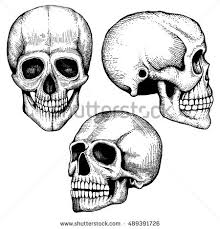 hand drawn vector death scary human stock vector 489391726