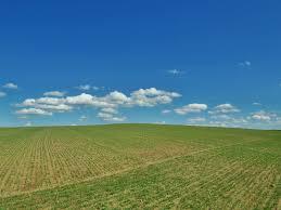 panoramio photo of modré nebe nad zeleným polem sky above a
