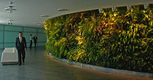 earth friendly landscapes vertical garden installation from