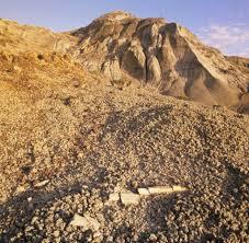 Bad Lands Kanada In Den Badlands Graben Besucher Nach Dinosauriern Welt