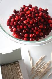 thanksgiving stem activity building cranberry structures with
