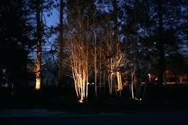 orbit evergreen landscape lighting evergreen outdoor landscape lighting landscaping and gardening blog