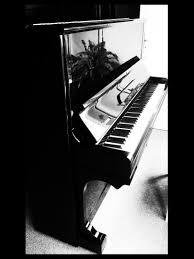 Comment Choisir Un Piano Louez Un Piano Avant De L U0027acheter Piano Concept Alain Genestoux