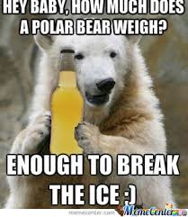 Polar Bear Meme - drunk polar bear by recyclebin meme center