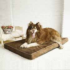 papa pet solid memory foam orthopedic dog bed with durable