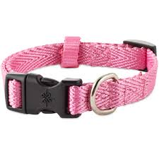 dog collars best small to large dog collars petco