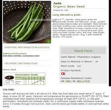 buying vegetable seeds u2013 fairfax gardening