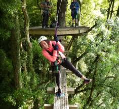 gift vouchers for christmas the perfect gift rotorua canopy